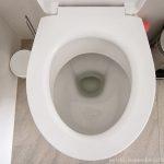 DIY: Zapchana toaleta - domowe pomysły na jej odblokowanie
